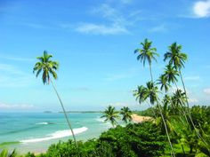 Bentota, Sri Lanka... Very high on my list of places I need to go!