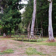 Outdoor Furniture, Outdoor Decor, Park, Plants, Photography, Photograph, Fotografie, Parks, Photoshoot