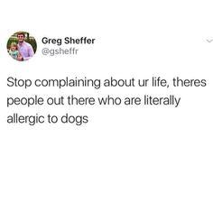 Never complaining again