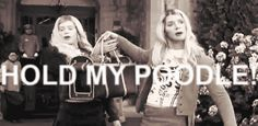 Hold my poodle. It's time for some White Chicks gifs. White Chicks Movie, Movies Showing, Movies And Tv Shows, Giggle Wiggle, Lol, Funny As Hell, Music Tv, Movie Quotes, Funny Quotes