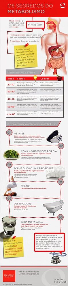 Os segredos do metabolismo  Visite http://planoodontologicoamil.com.br/