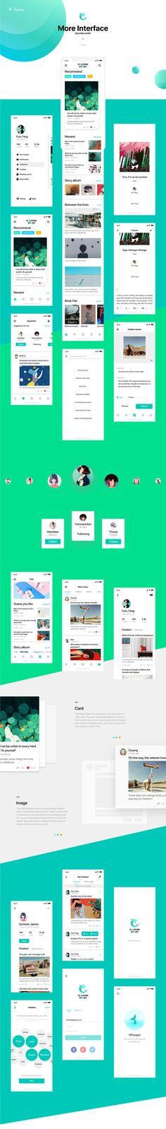 Dolphin Story App