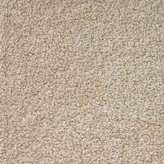 SIMPLE ATTRACTION, Light Chocolate, Plush PetProtect® Carpet - STAINMASTER®