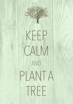keep calm and plant a tree / created with Keep Calm and Carry On for iOS #keepcalm #tree