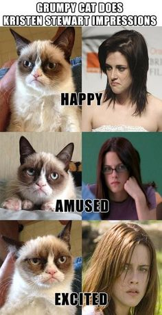 Silly cat Kristen Stewart none have emotions