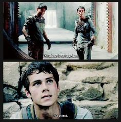 THE MAZE RUNNER WAS SO MUCH MORE THAN I EXPECTED. IT WAS JUST PERF LIKE I CAN'T EVEN