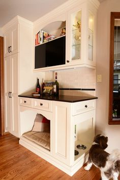 dog feeding station in kitchen | ... dark and dated kitchen with a new lighter and more functional kitchen