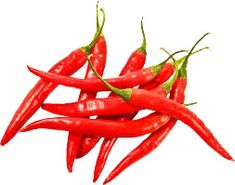 Prodgf a set Red hot chili pepper vegetable seed 1 set Healthy Eyes, Hottest Chili Pepper, Natural Health Remedies, Stuffed Hot Peppers, Spicy Recipes, Red Peppers, Grocery Store, Protein, Veggies