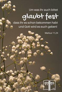 Was man glaubensvoll und schriftgemäß ausspreche, wird man erhalten. Gottes Zusagen sind für uns erreichbar im Namen Jesus. Markus 11,23-24. Mehr: http://www.gottes-wort.com/aussagen.html
