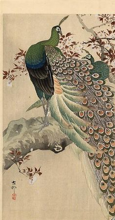 Two green peacocks on the bough of a flowering tree, 1910 by Ohara Koson. Shin-hanga. bird-and-flower painting