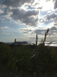 22 Settembre. L'isola si sveglia pian piano. #Settembre #Natura #Ventotene