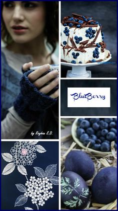 '' Color - Blueberry '' by Reyhan S.D.
