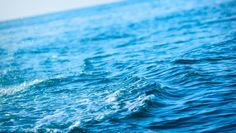 Researcher reviews ecosystem-based ocean management approaches