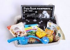 Doggie Hampers | Mothers Day Presents | Champagne Gift Sets: Pamper Your  Pet Dogs with Nourishing Gift Hampers...