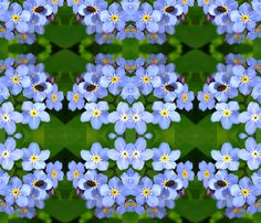 forget-me-not with a bug fabric by poppy's on Spoonflower - custom fabric