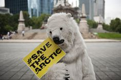 A Greenpeace activist fancy dressed as a polar bear participates in a protest against oil exploitation and industrial fishing in the Artic, in Mexico City, on June 21, 2012 . Greenpeace formally launched its global campaign to save the Arctic in the framework in the Rio+20 gathering. AFP PHOTO/RONALDO SCHEMIDT