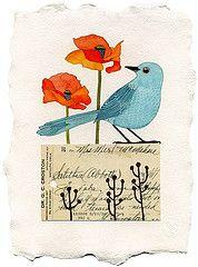 Series of bird images.