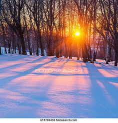 """""""Stock Images of Sunset in winter"""" - Winter stock photos available at Fotosearch.com"""