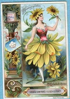 Daisy Flower Spirit trading card issued by Liebig Extract of Beef Company. Vintage Labels, Vintage Ephemera, Vintage Cards, Vintage Paper, Vintage Postcards, Vintage Images, Decoupage, Images Victoriennes, Illustration Art