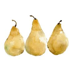 Pears art print of original watercolor painting of 3 yellow pears, still life, yellow, botanical. kitchen art, limited edition via Etsy