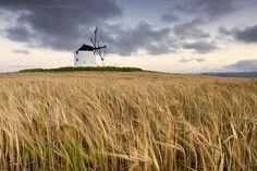 Windyyy by Hugo Marques, via 500px