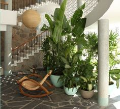 Love this jungle entryway. The rocking rope chair, the flagstone floors, all the live plants and that beautiful staircase are my favorite things.