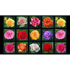 Elizabeth Studios Digital Garden Rose Garden Squares Panel Black | Quilting Panel | Fabric