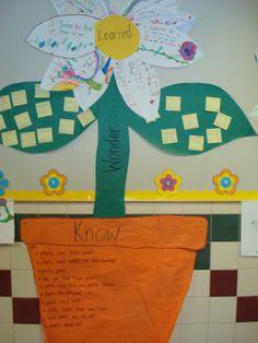 2nd grade science plants   Mrs. Coffee's 2nd Grade Class