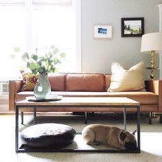 A DIY Designer & Chronic Rearranger's Boston Condo — House Call