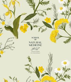 Custom pattern illustration of the beautiful and powerfully healing plants. Have learnt so much during this brand identity with Bonny of School of Natural Medicine. Can't wait to share the complete look! Graphic Design Tips, Logo Design Inspiration, Print Design, Plant Illustration, Pattern Illustration, Brand Identity Design, Branding Design, Cosmetic Design, Stationary Design