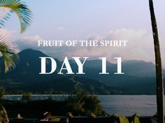 She Reads Truth - The Fruit of the Spirit: Self-Control