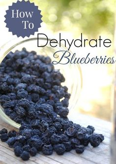Dehydrated Blueberries | Top 17 Healthy Dehydrated Fruit Recipes You Can Make This Winter