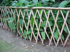 Huangxing Park Bamboo fence.jpg