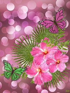 Butterflies and Pink Flowers