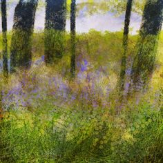 The Old Cells Studio - Michèle Brown Art: Bluebell wood - iPad painting