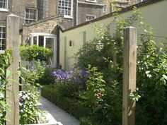 Duncan Terrace | Projects | Richard Miers - Garden Design Garden Design Ideas On A Budget, Small City Garden, Closer To Nature, Terrace Garden, How To Do Yoga, Horticulture, Bloom, Backyard, Projects