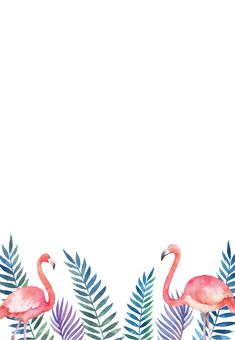 Popular Ideas For Pool Party Invitations Templates Cute Backgrounds, Cute Wallpapers, Wallpaper Backgrounds, Iphone Wallpaper, Wallpaper Ideas, Flamingo Party, Flamingo Birthday, Party Games For Ladies, Free Party Invitations