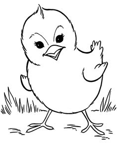 Farm animal chicken coloring page | Spring baby chick