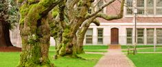 Considering Graduate School?    Check out this awesome website!  It has so much information about graduate schools and how to get there!