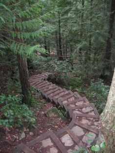 These steps lead somewhere...somewhere wonderful.  #Stairway #Path by Nina Maltese