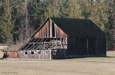 The old barns are slowly disappearing and rarely restored....Oh, if only they could talk, what stories they could tell. :)