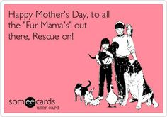 Happy Mother's Day to all the fur baby moms!