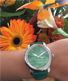 Blooms monday 🌼 What are your favorite flowers? • • • • #alexbenlo #watch #flowers #monday #mondaygoals #colorful #jade #doublehappiness #happycouple #love #fall #uniquewatch #swisswatch #swissmade #positivevibes #blooming #wristoutfit #travel #lovenature #motherearth