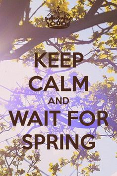 Keep Calm And Wait For Spring | Quote Picture
