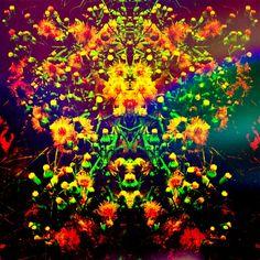 Alfombra de. flores en la hierba