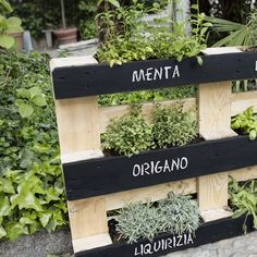 il video e scopri come costruire un orto verticale con i pallet.Guarda il video e scopri come costruire un orto verticale con i pallet. 27 Best Front Door Flower Pots Will Add Good First Impression Your House Vertical Pallet Garden, Herb Garden Pallet, Herb Garden Design, Vegetable Garden Design, Vertical Herb Gardens, Wood Pallet Planters, Pallet Gardening, Pallet Garden Projects, Palette Herb Garden