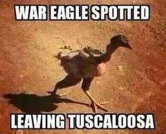 I gotta show my Dad! Alabama Football Funny, Sec Football, Bulldogs Football, Crimson Tide Football, Football Memes, College Football, Football Stuff, Football Season, Lsu