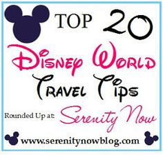Serenity Now: We're Going to Disney World! (Tips and Tricks)