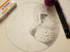 두번째 시도한 연필 드로잉..고양이.. 넘 아직 부족한 그림..