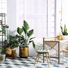 W O R K • S P A C E••• || a place to inspire || Greenery makes everything better  Even an office space on a Monday!  #greenery #plants #planters #indoorgarden #outdoorsin #style #design #brass #decor #pots #homewares #succulents #office #workspace #interiorstyle #interiordesign #indoorplants  and inspiration from @insideoutmag
